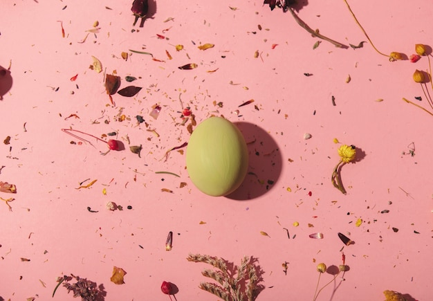 Желтое яйцо с сухим растительным декором на розовом фоне Premium Фотографии