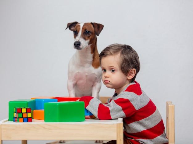 小さな幼児男の子が犬とテーブルで遊ぶ Premium写真