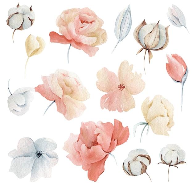 水彩冬のピンクの花 Premium写真