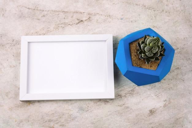 青いコンクリートポットと白の大理石のテーブルの上にモックアップで多肉植物のトップビュー Premium写真