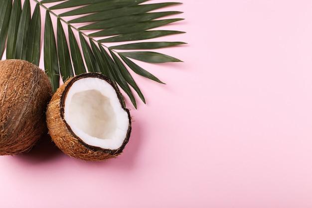 ココナッツとヤシの葉、コピースペース。夏の気分、熱帯、空白。 Premium写真