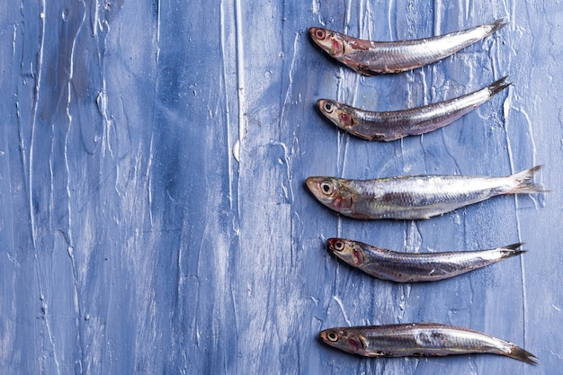 魚のパターン。青の新鮮なアンチョビ Premium写真