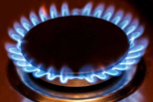 Пламя газовой горелки на газовой плите Premium Фотографии