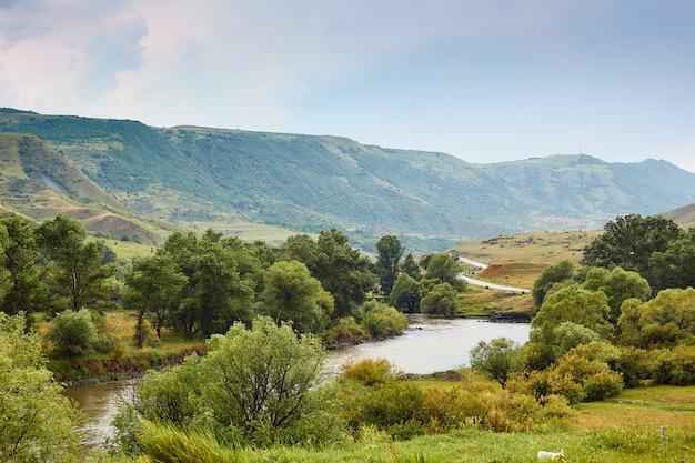 ジョージア州の山々の渓谷、自然の風景の中の川 Premium写真