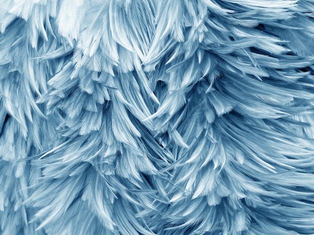 鳥鶏の羽の抽象的なテクスチャ Premium写真