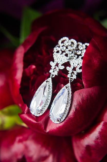 Закройте бриллиантовые серьги. закрыть, место для вашего текста Premium Фотографии