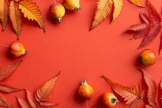 秋の背景。赤い背景の上の秋の葉のフレーム Premium写真