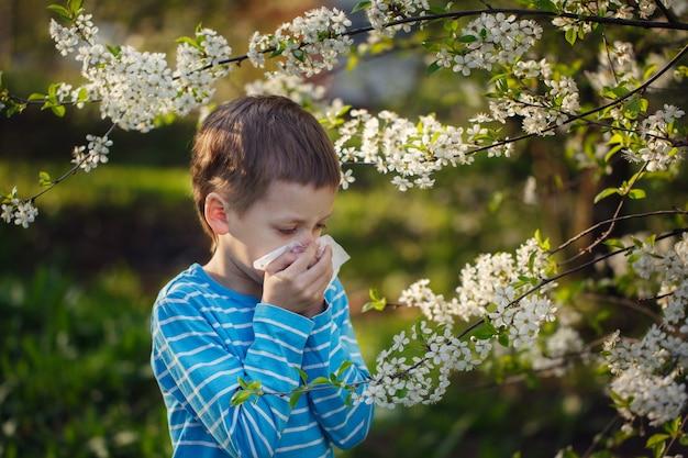 男の子は花粉アレルギーのためくしゃみをする。 Premium写真