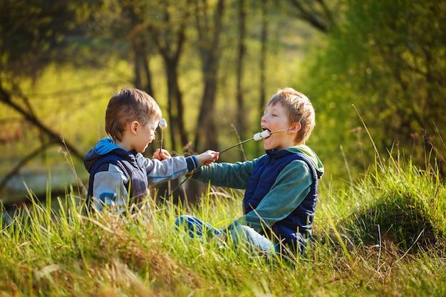 Два мальчика, держа палку и готовые к употреблению жареные зефир. Premium Фотографии