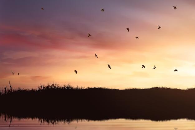 飛んでいる鳥のシルエット Premium写真