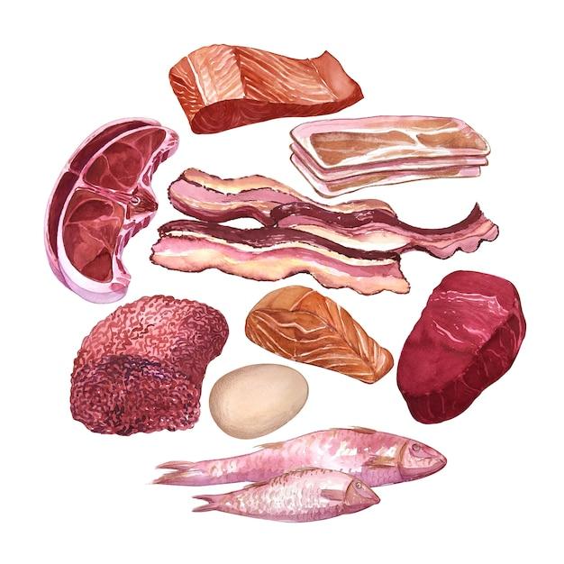 Ручной обращается акварель набор различных видов мяса, рыбы, яиц. Premium Фотографии