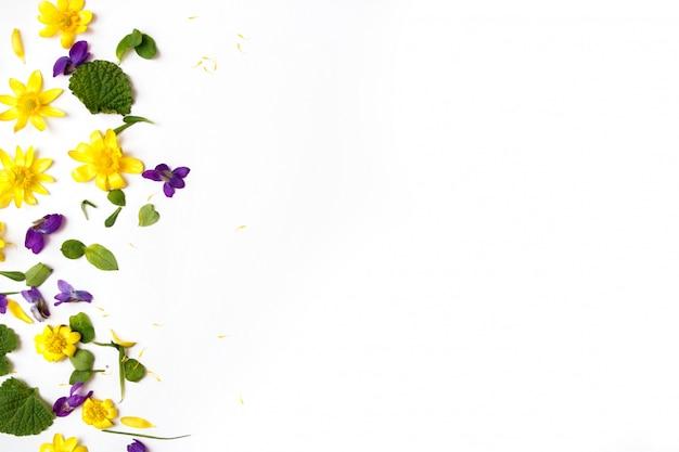 花の組成白地に黄色と紫の花。フラットレイアウト、上面図、コピースペース。 Premium写真