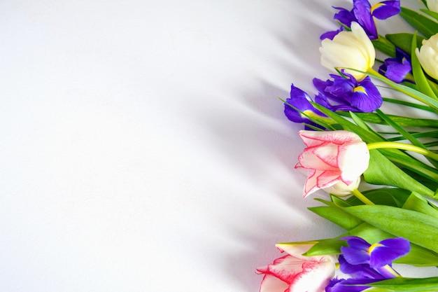カラフルな春のチューリップと白い背景の上のアイリスの花 Premium写真
