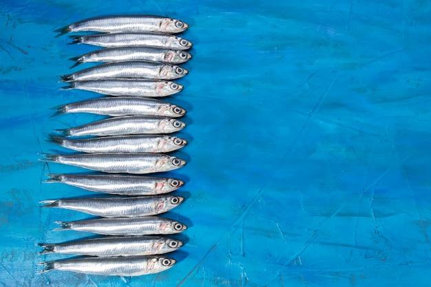 シーフード。小さな海の魚、アンチョビ、青い背景にイワシ。コピースペース付き Premium写真