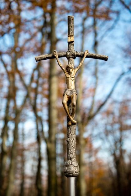 教皇クロスフォレスト Premium写真