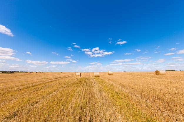日没時のわら俵収穫後の麦畑 Premium写真