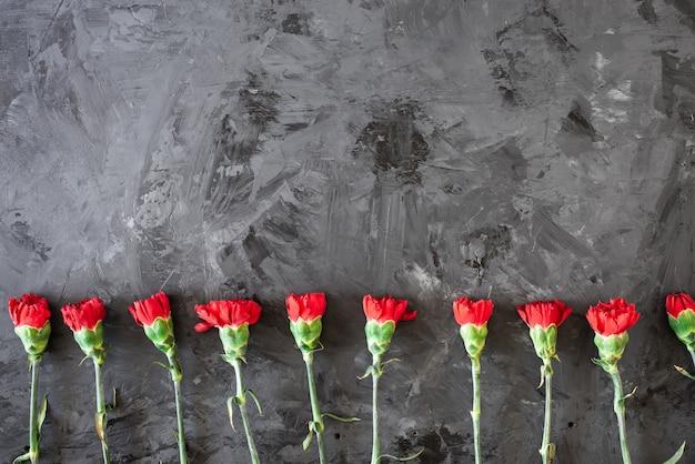 赤いカーネーションの花のボーダーまたは灰色の背景に赤いカーネーションを持つフレーム Premium写真