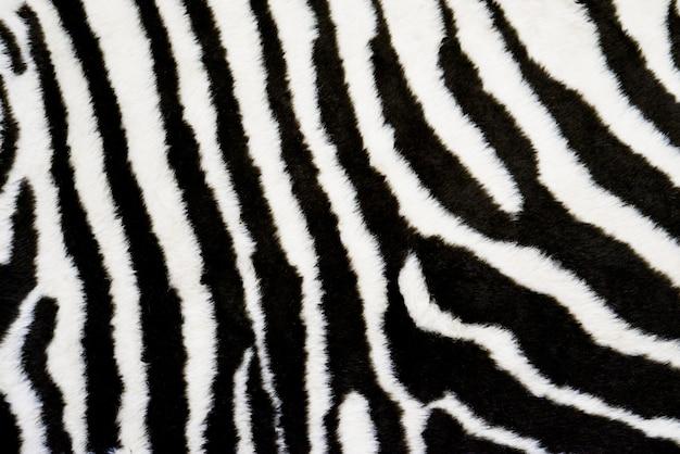 Зебра текстура ковер фон. рисунок животного Premium Фотографии