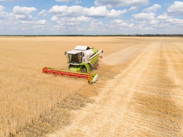 夏に小麦を収穫 Premium写真