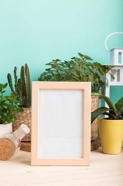 多肉植物、鉢植えと空白のフォトフレームの観葉植物 Premium写真