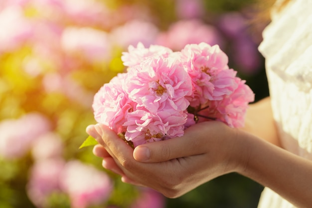 Женщина, держащая розы крупным планом. летний сезон. Premium Фотографии