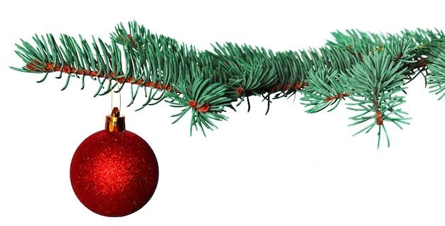 白で隔離されるモミの枝でクリスマスボール Premium写真
