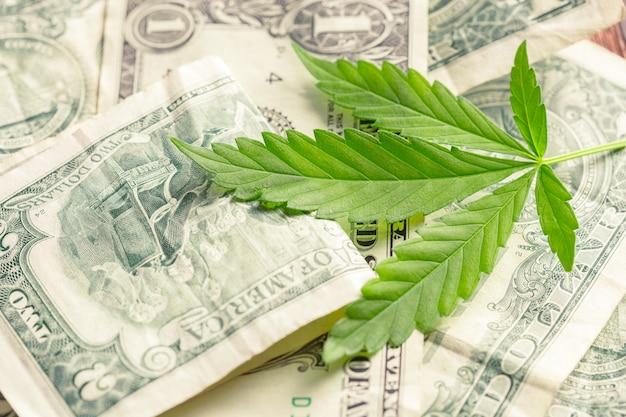 大麻葉とお金 Premium写真