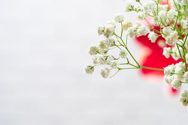 白い部屋で赤ちゃんの息の花の枝をクローズアップ Premium写真