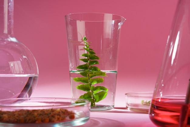 実験室での美容とスキンケアの栄養補助食品の概念研究 Premium写真