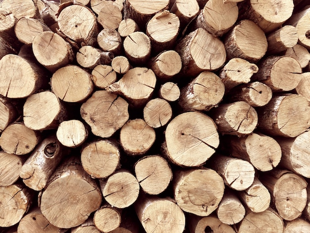 背景の木の切り株のスタック。 Premium写真