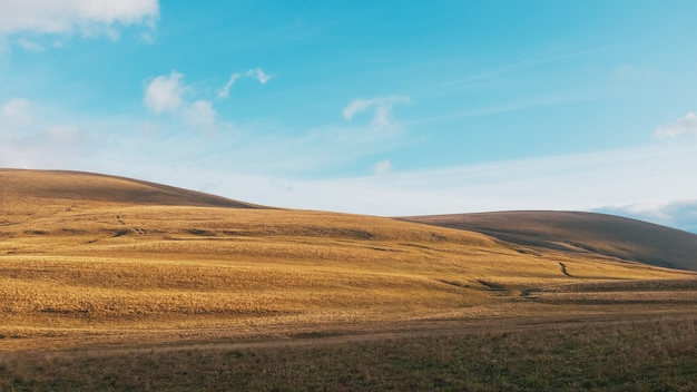雄大な風景の中の日の出の黄金の丘と牧草地を通るルート。 Premium写真