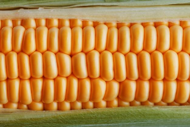 黄金のトウモロコシのクローズアップの熟した穀物 Premium写真