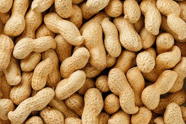 未確認の殻付きピーナッツ。 Premium写真