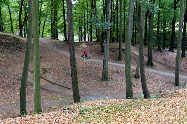 自転車は公園で自転車に乗る準備をしています。 Premium写真