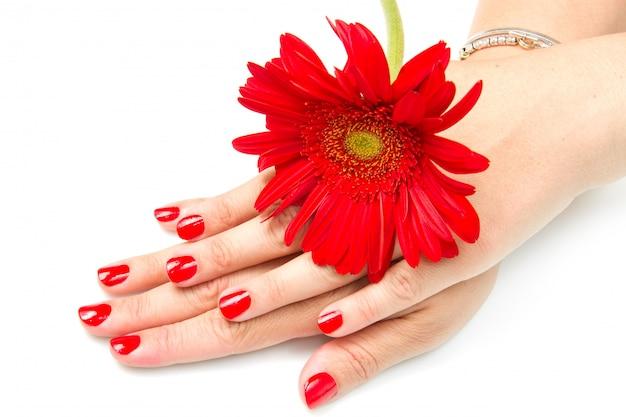 赤いマニキュアと赤い花を持つ女性の手 Premium写真