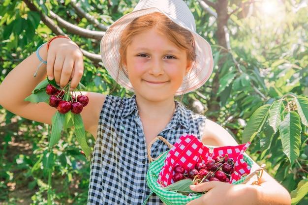 若い女の子は果樹園で桜を拾っています。子供は夏の果樹園でチェリーを選びます。 Premium写真