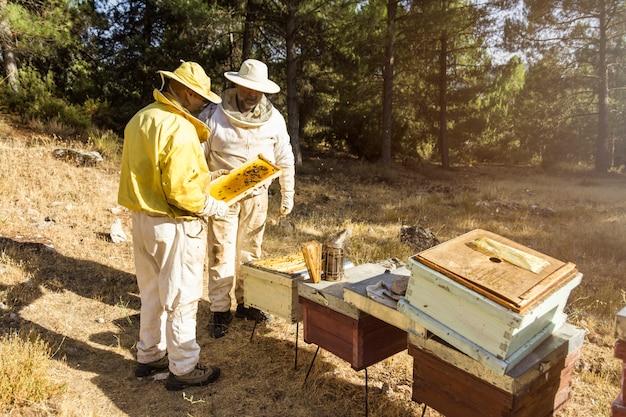 養蜂家 無料写真