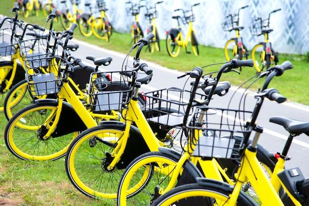 黄色の自転車レンタル。緑の芝生にたくさんの黄色い自転車が立っています Premium写真