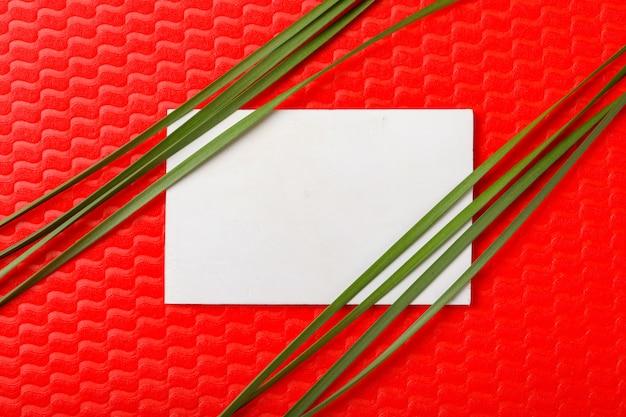 コピースペースを持つ赤い背景の上の花と葉 Premium写真