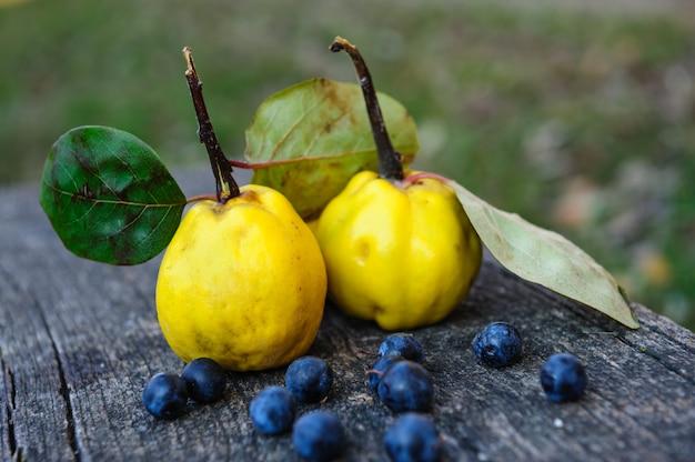 マルメロ果実とブラックソーンベリー Premium写真