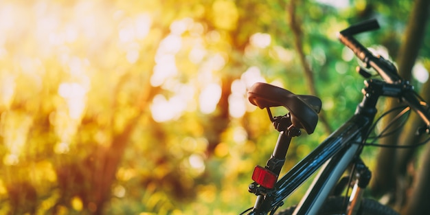夕暮れ時の森のマウンテンバイク。 Premium写真