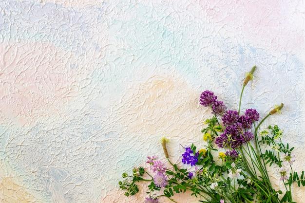 白ピンクブルーの花。最小限の概念クリエイティブです。 Premium写真