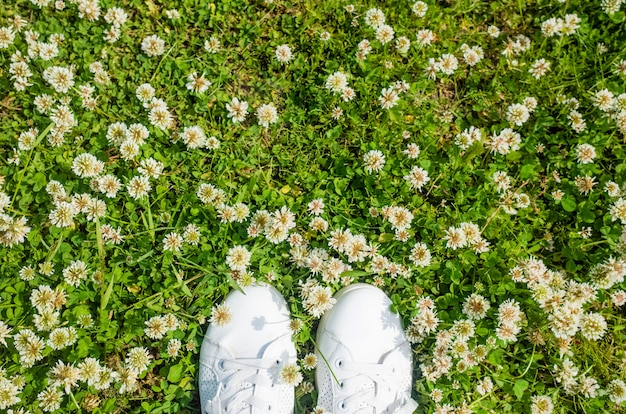 Белые кроссовки на фоне белых цветов клевера. Premium Фотографии