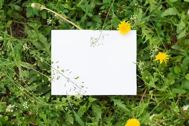 Вид сверху макет листьев с бумажной запиской Premium Фотографии