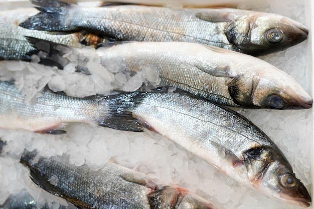 スーパーマーケットのカウンターの氷の中の冷凍魚。 Premium写真