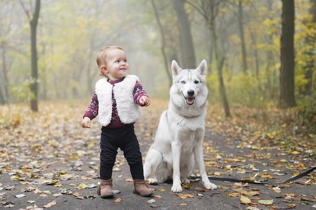 Маленькая девочка, играя с собакой хаски, прогулки в лесу Premium Фотографии