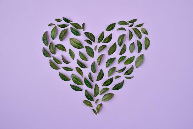 Летняя композиция. зеленые листья расположены в форме сердца на синем фоне. Premium Фотографии
