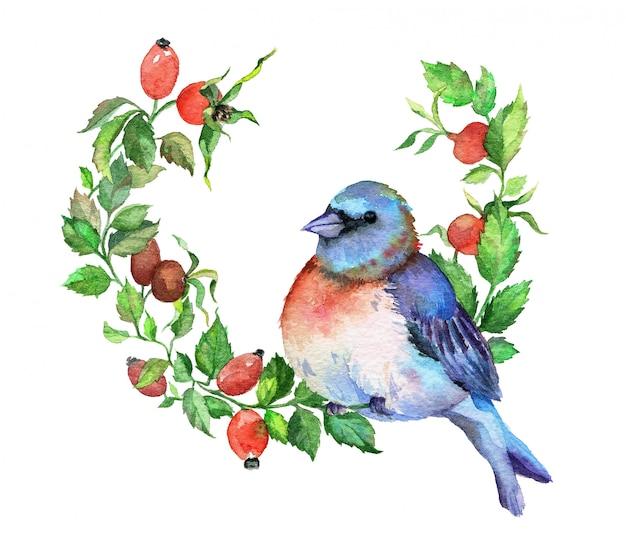 ブライヤー枝に青い鳥。水彩イラスト。 Premium写真