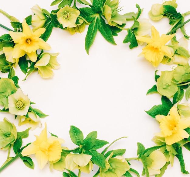 花フレーム水仙と白のヘレボルス Premium写真