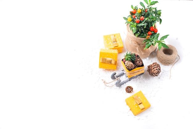ギフト用の箱と木の板と花のポットのバンプ Premium写真